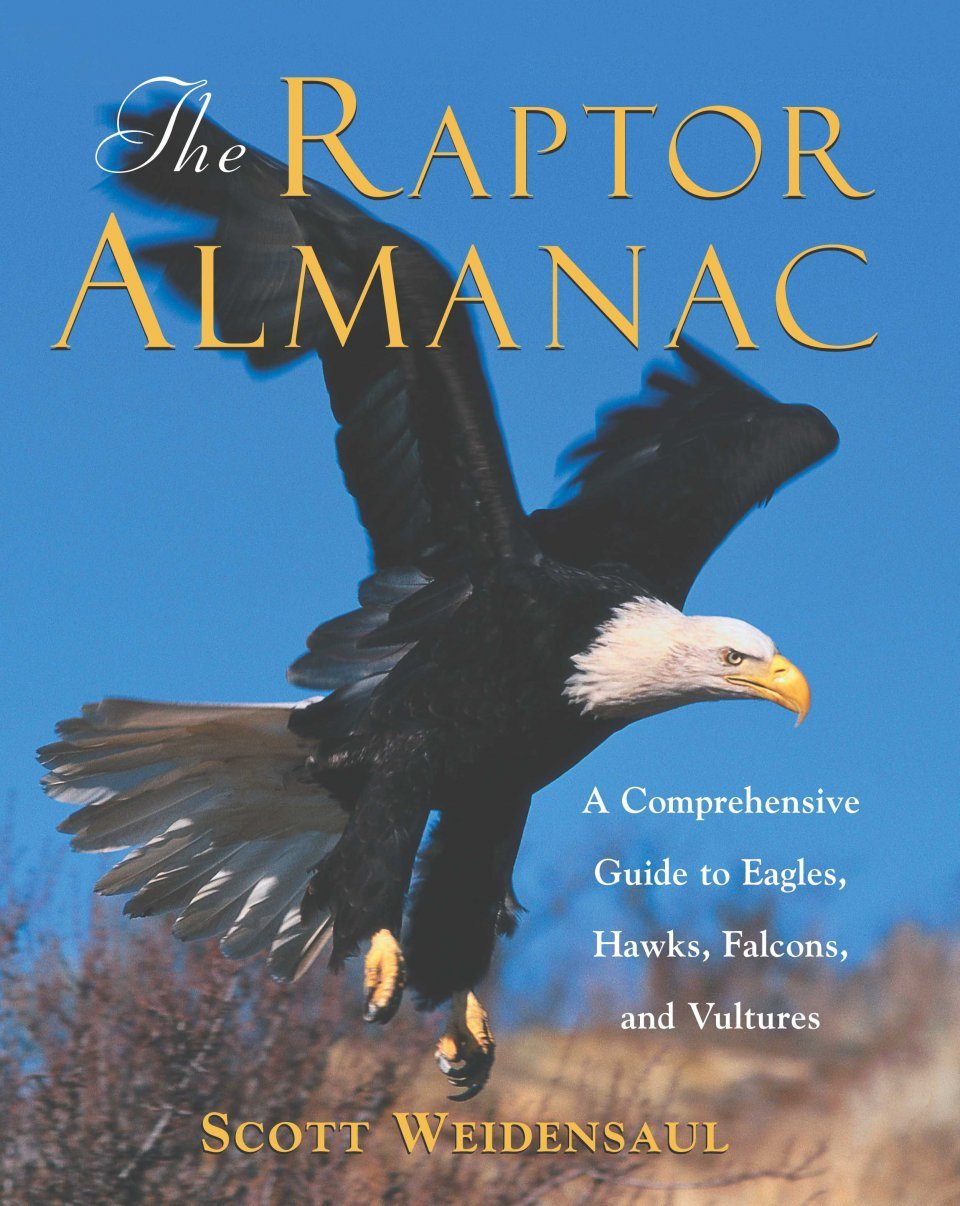 The Raptor Almanac