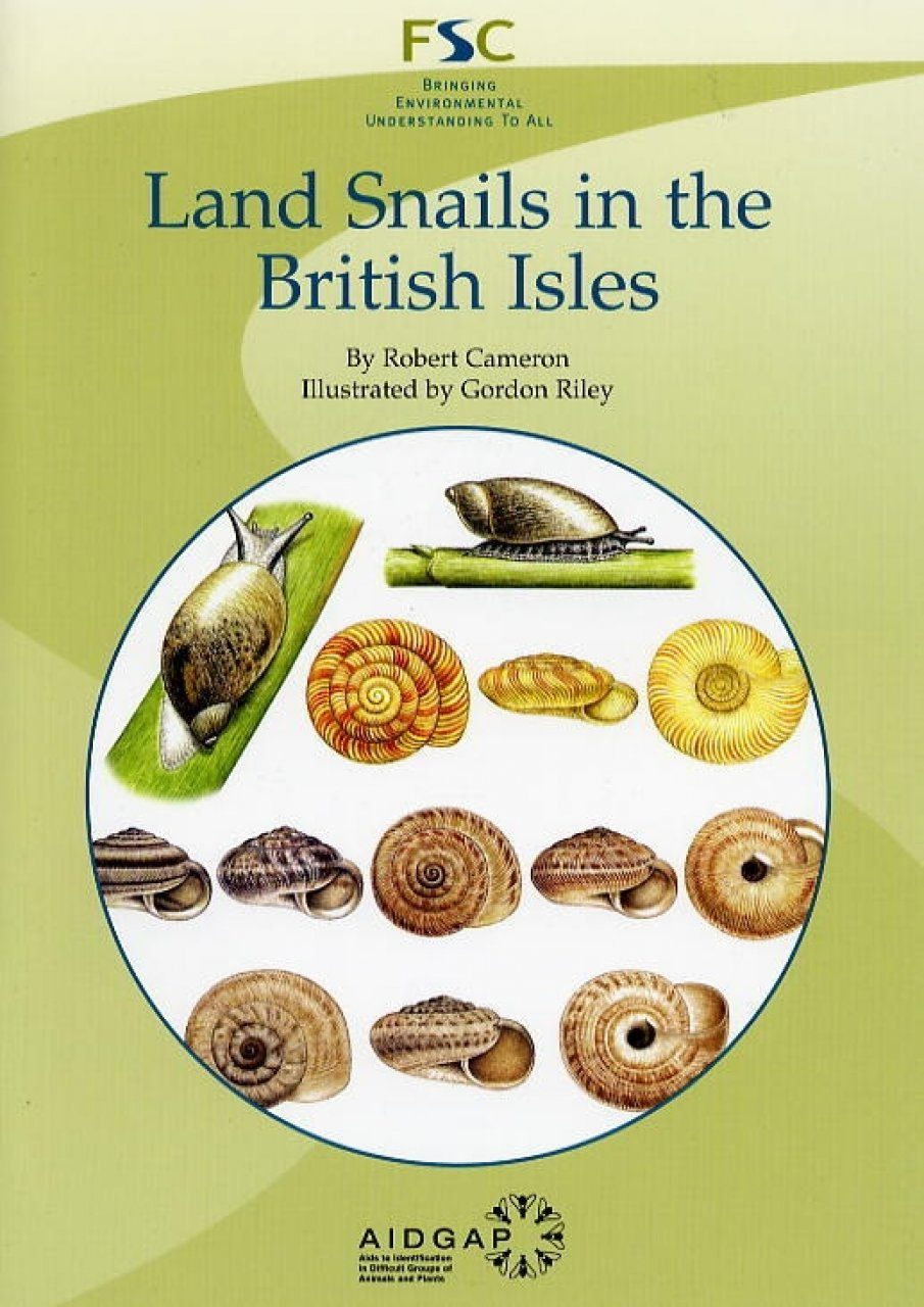 Land Snails in the British Isles