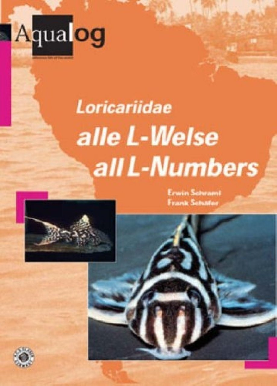 Loricariidae: Alle L-Welse/All L-numbers