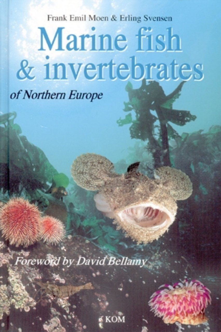 Marine Fish and Invertebrates of Northern Europe