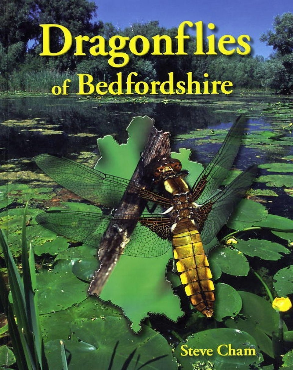 Dragonflies of Bedfordshire
