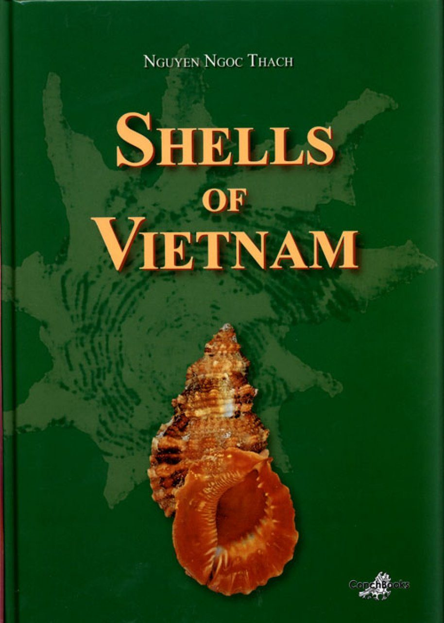 Shells of Vietnam