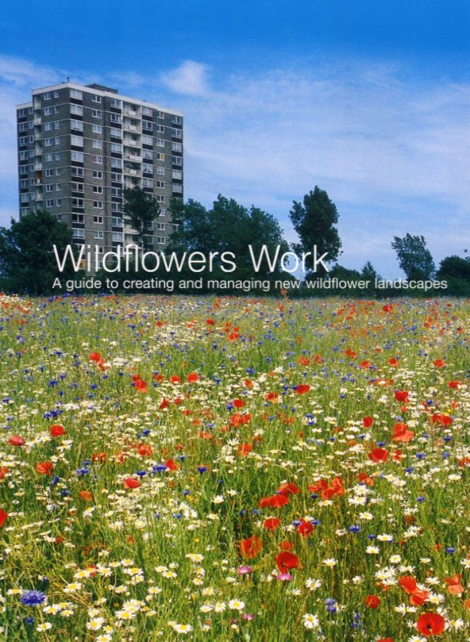 Wildflowers Work