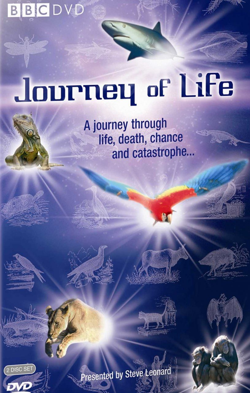 Journey of Life (Region 2)