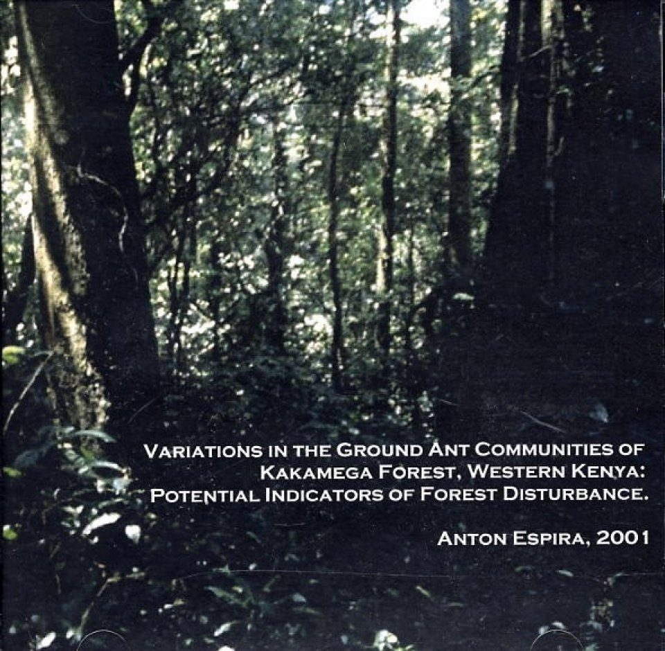 Variations in the Ground Ant Communities of Kakamega Forest, Western