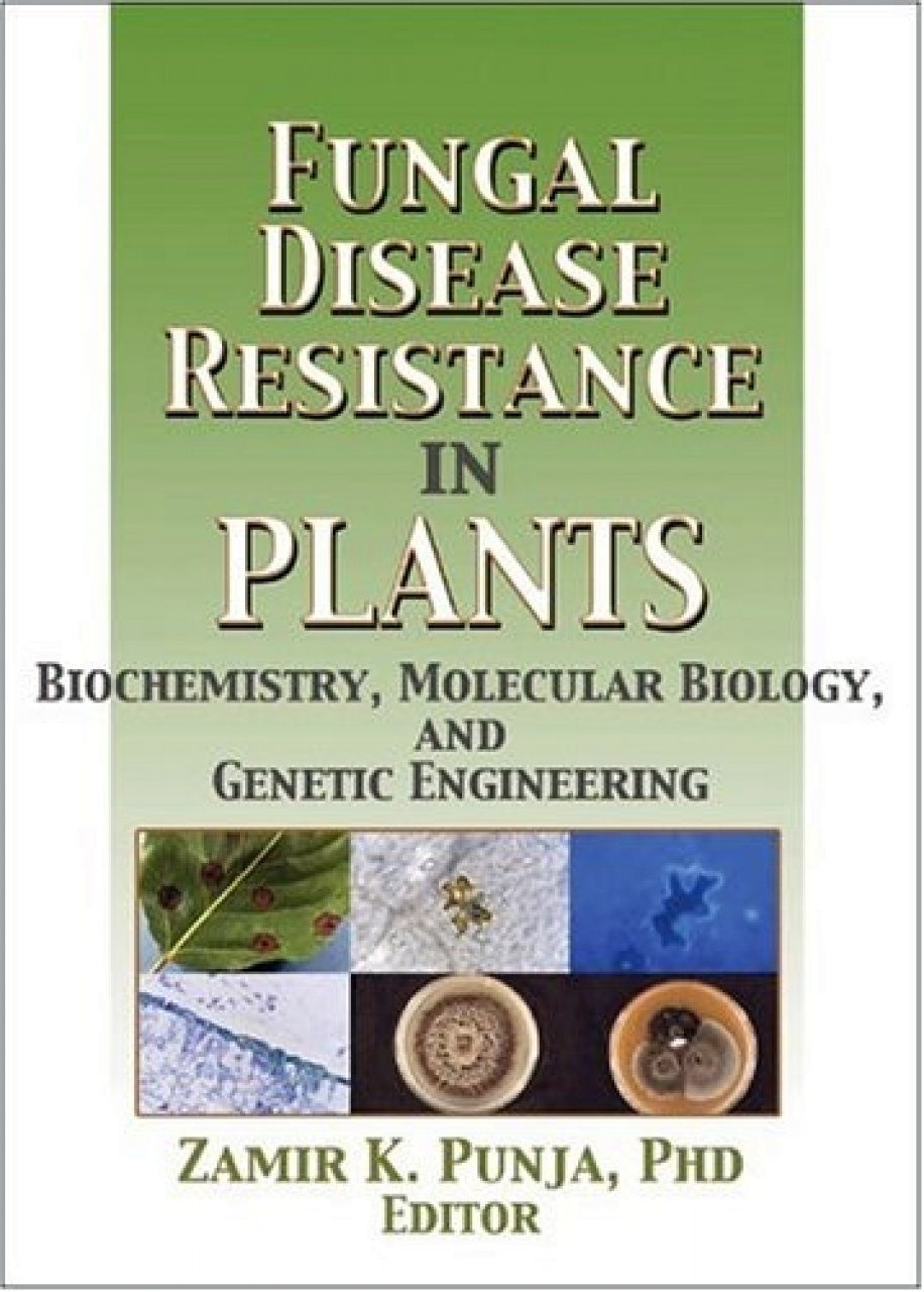 Fungal Disease in Plants