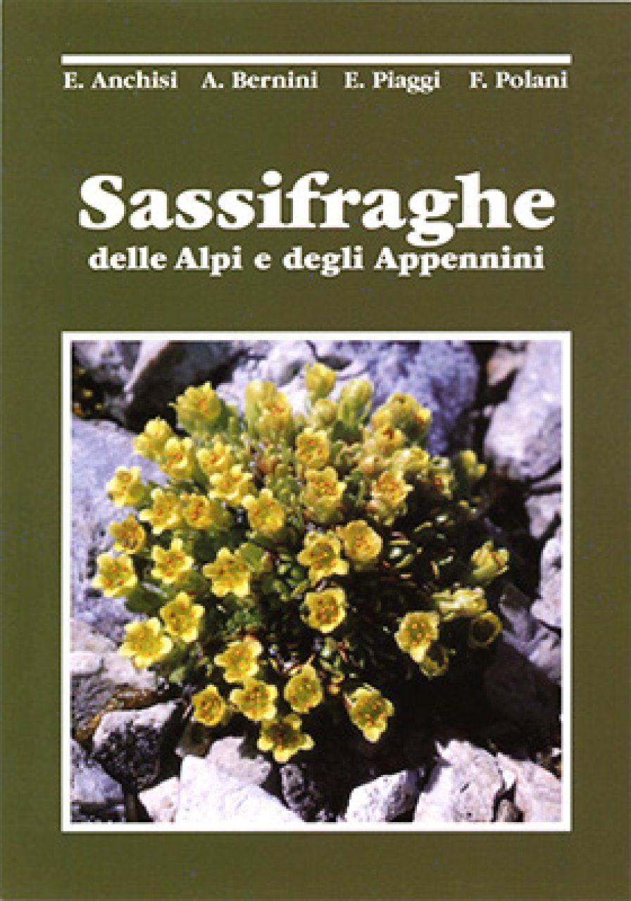 Sassifraghe delle Alpi e degli Appennini [The Genus Saxifraga in the Alps and the Appennines]