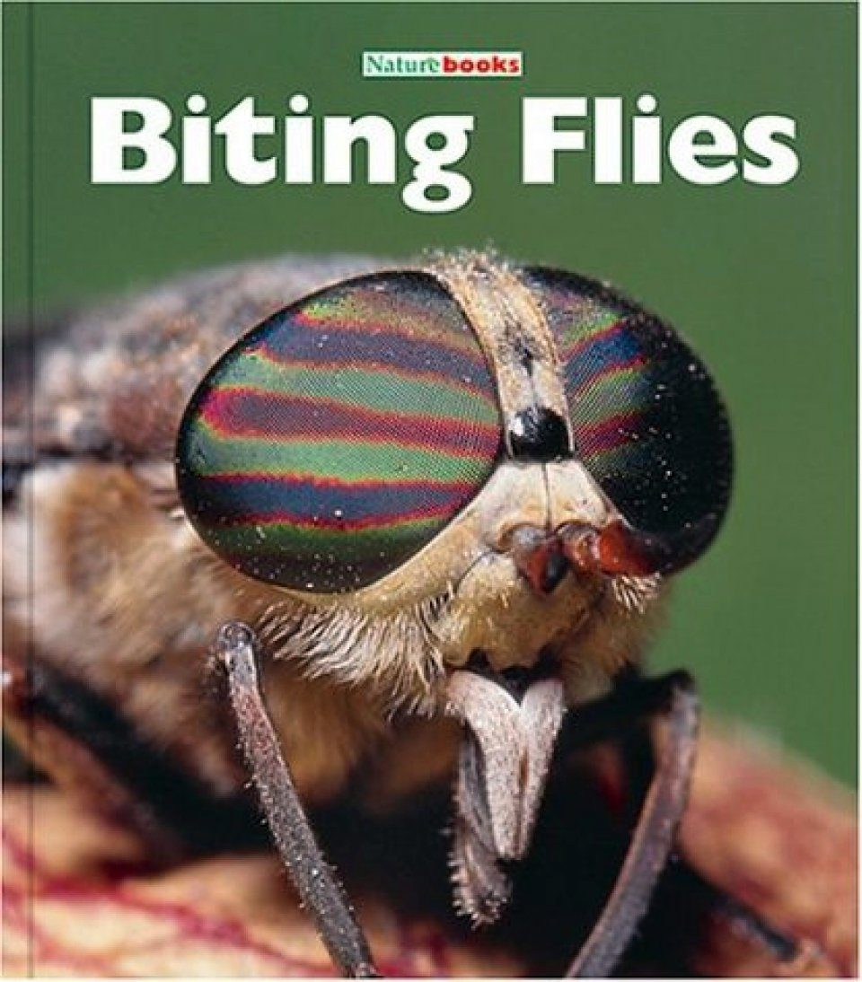 Biting Flies