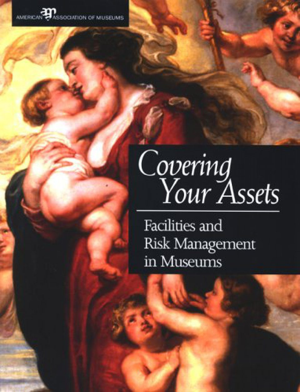 Covering Your Assets: Facilities and Risk Management in Museums