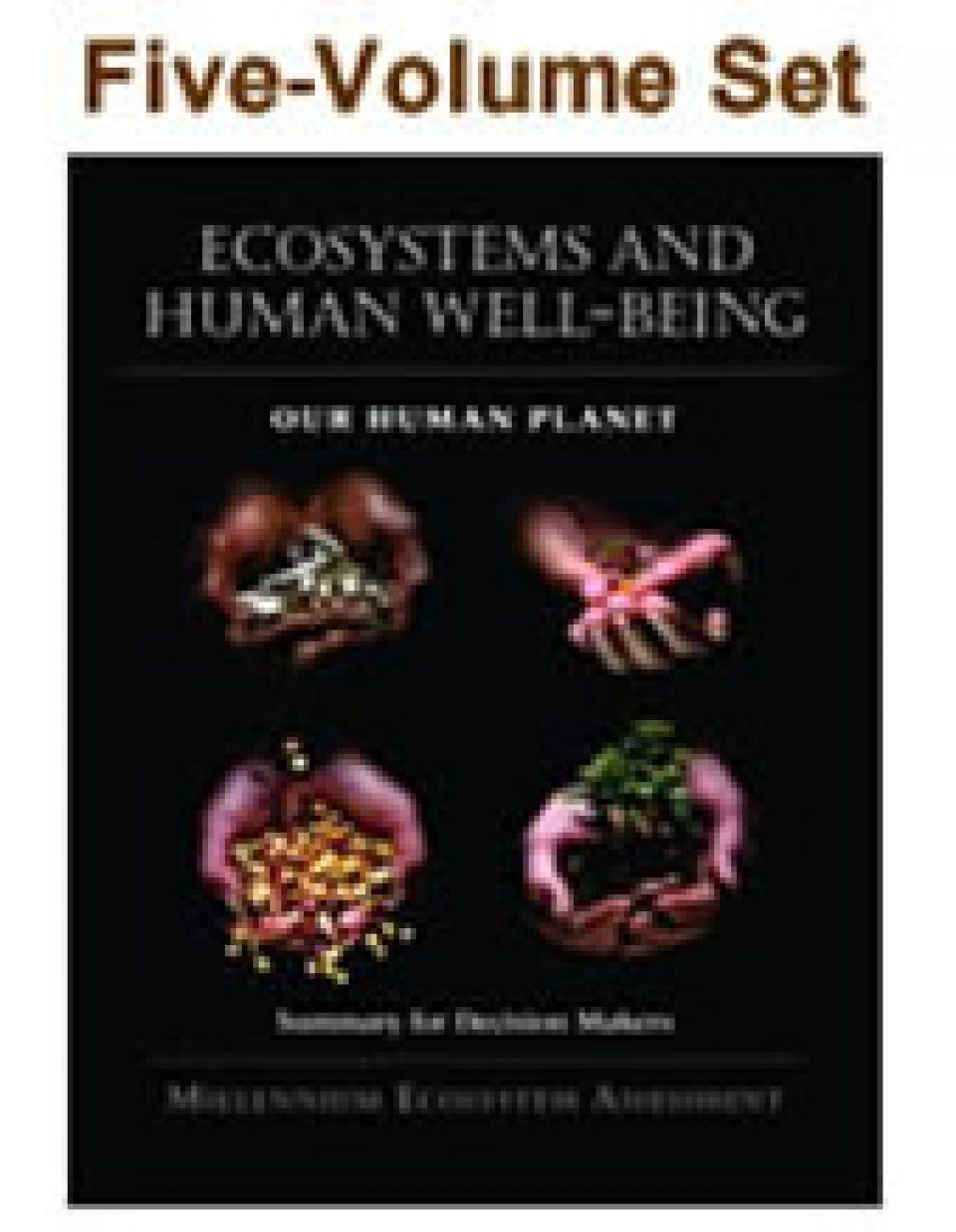 Millennium Ecosystem Assessment (5-Volume Set)