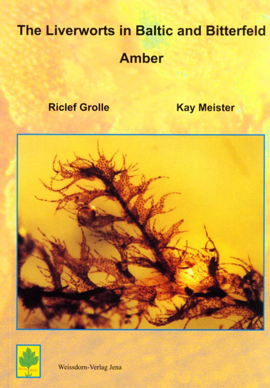 The Liverworts in Baltic and Bitterfeld Amber