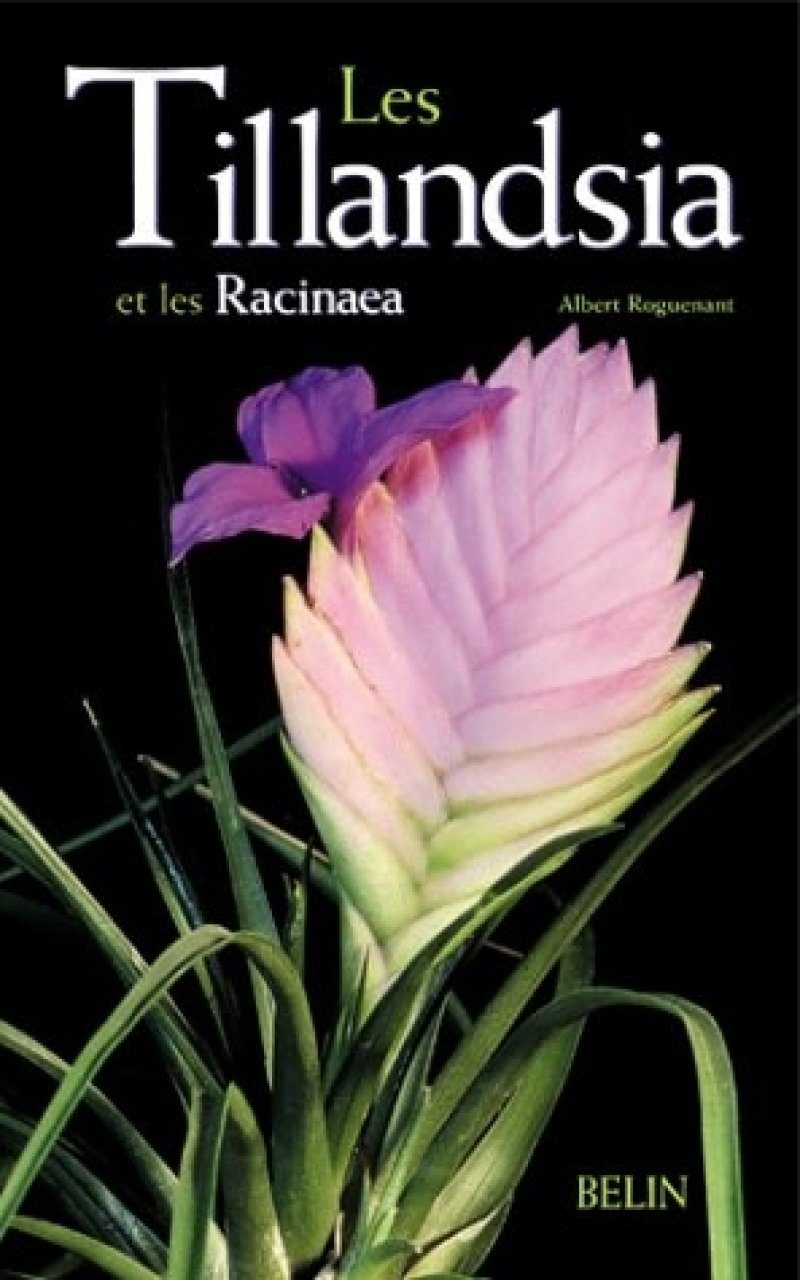 Les Tillandsia et Les Racinaea [The Genera Tillandsia and Racinaea]