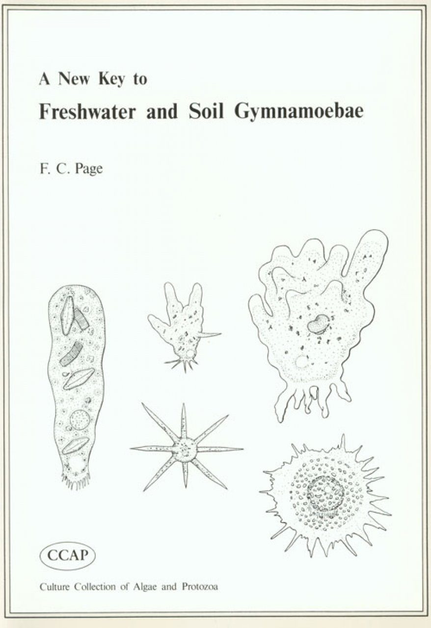 A New Key to Freshwater and Soil Gymnamoebae