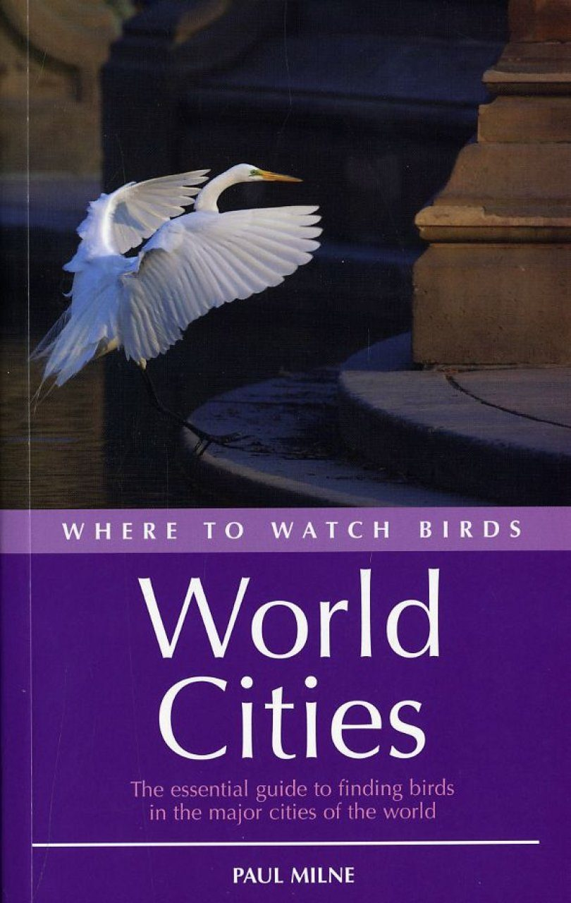 Where to Watch Birds in World Cities