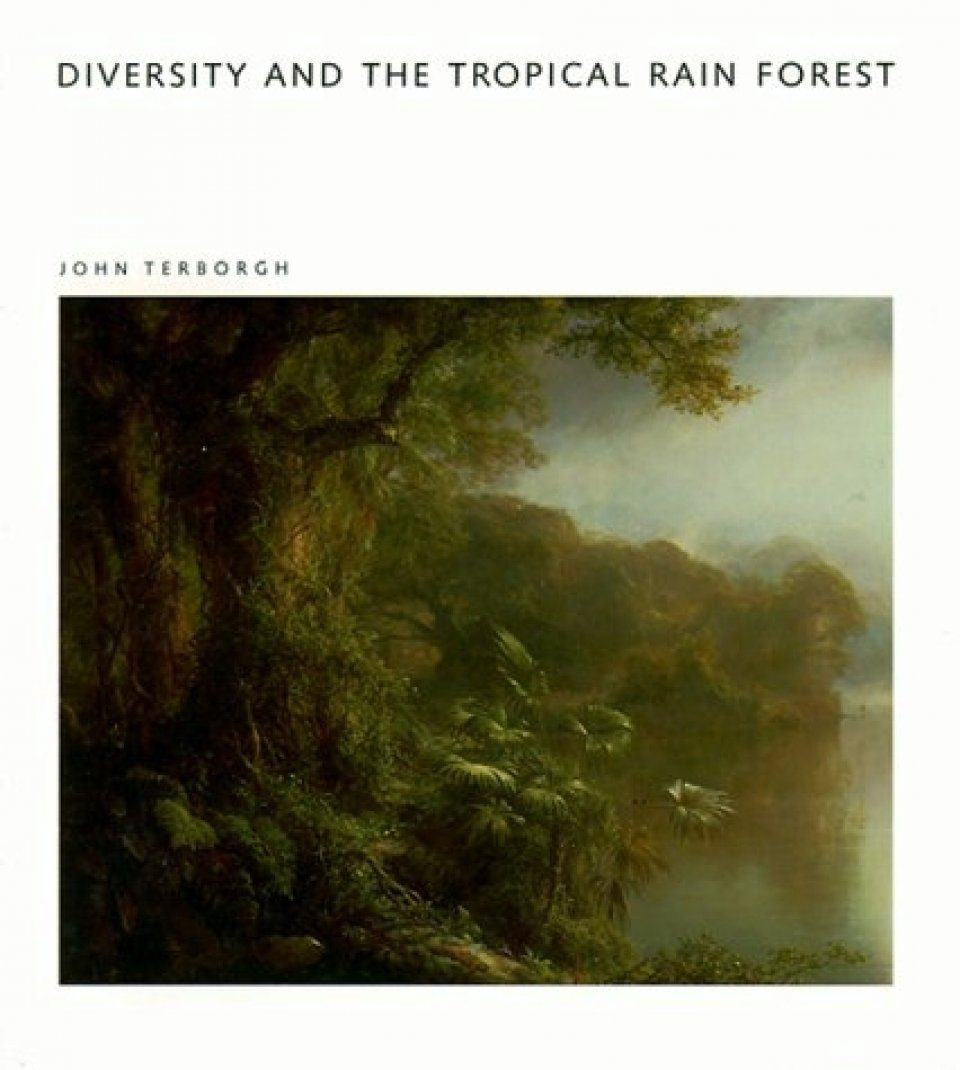Diversity and the Tropical Rain Forest