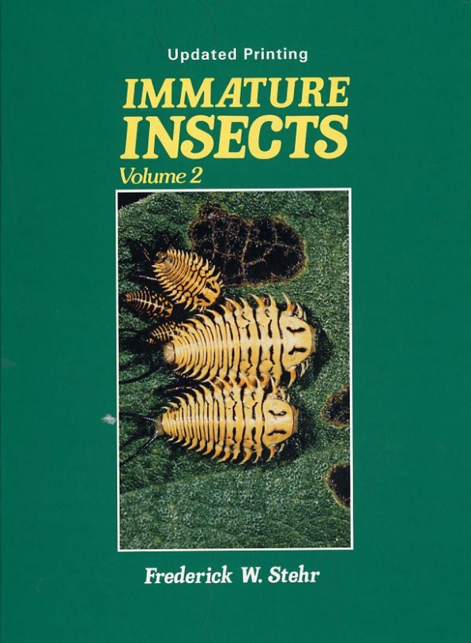 Immature Insects, Volume 2