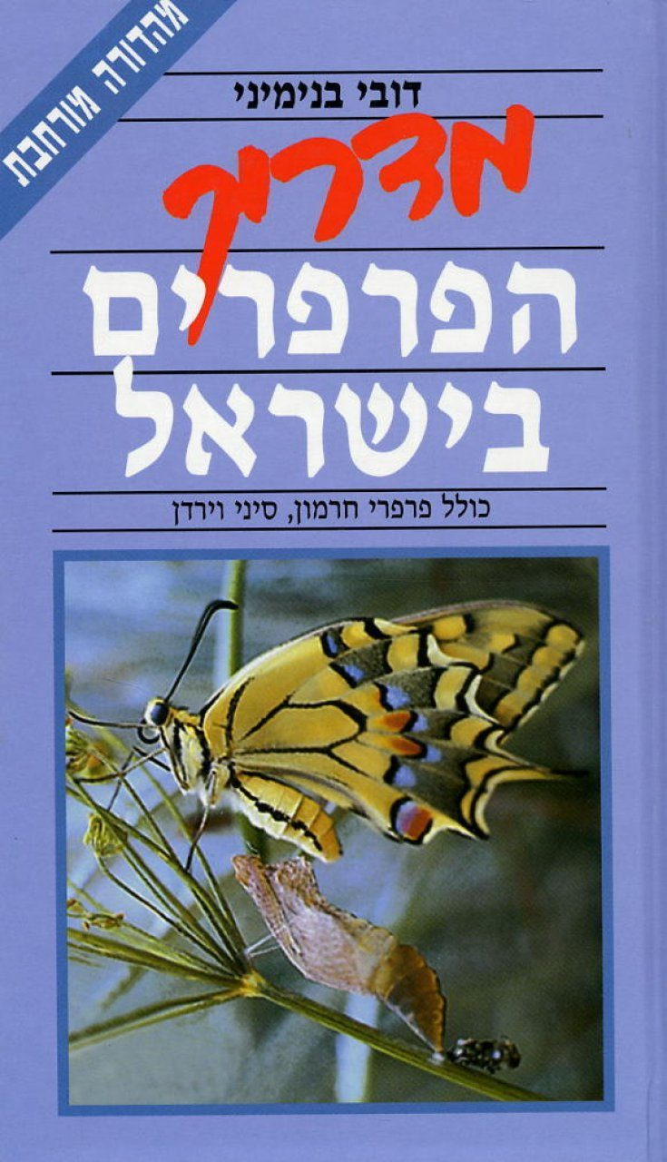 A Field Guide to the Butterflies of Israel [Hebrew]