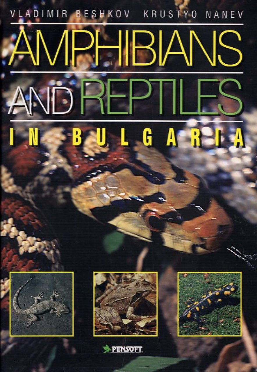 Amphibians and Reptiles in Bulgaria
