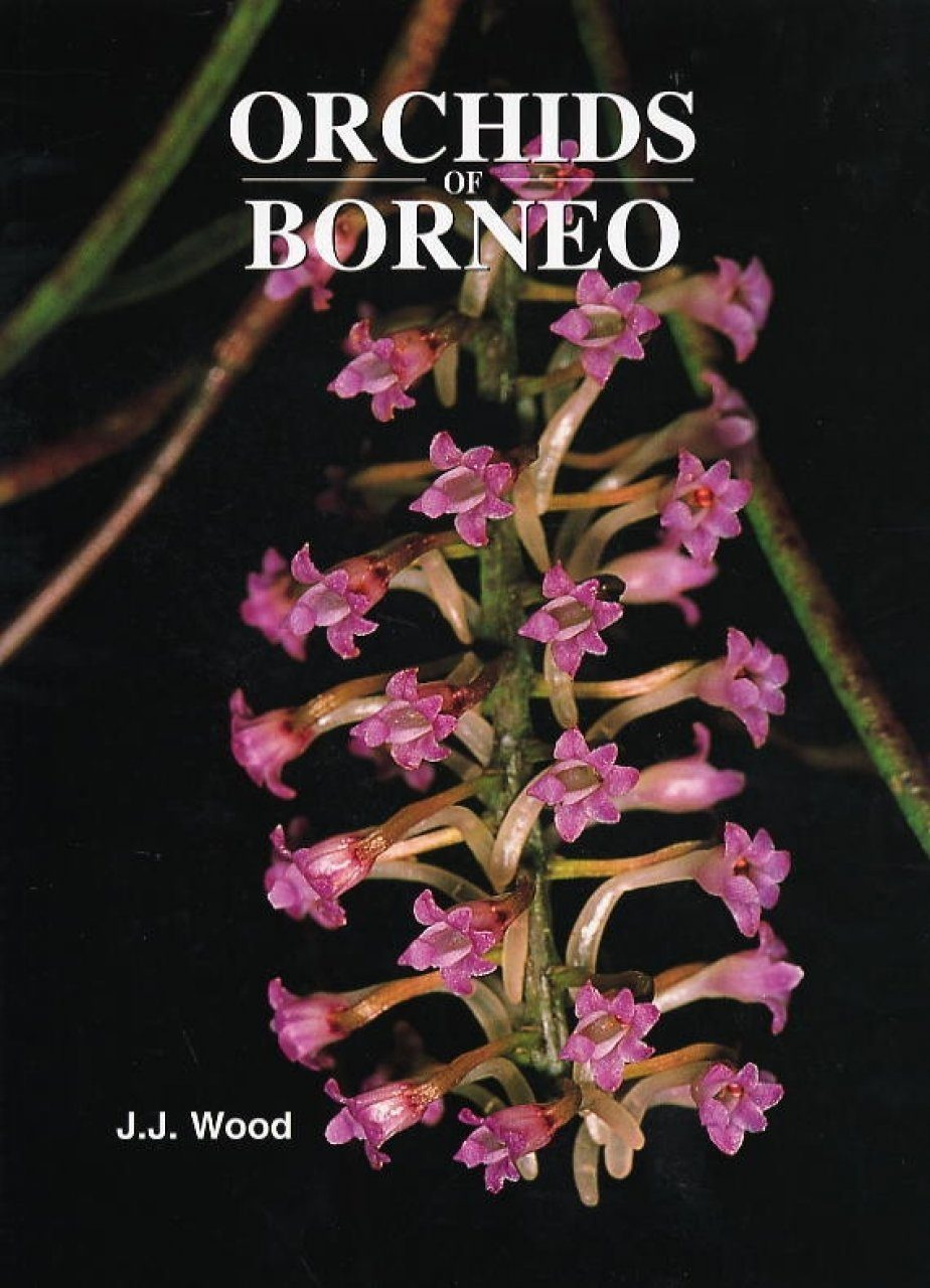 Orchids of Borneo, Volume 4