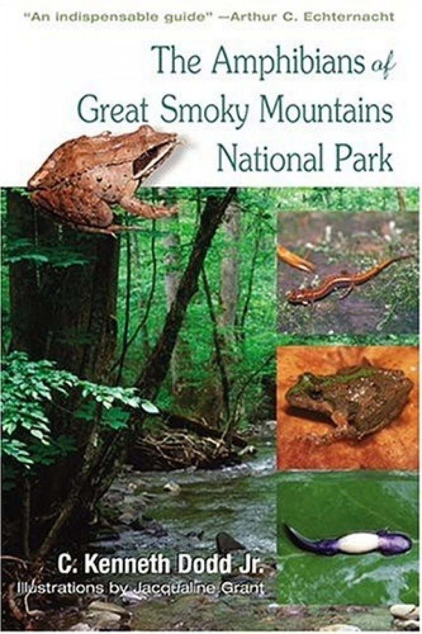 The Amphibians of Great Smoky Mountains National Park