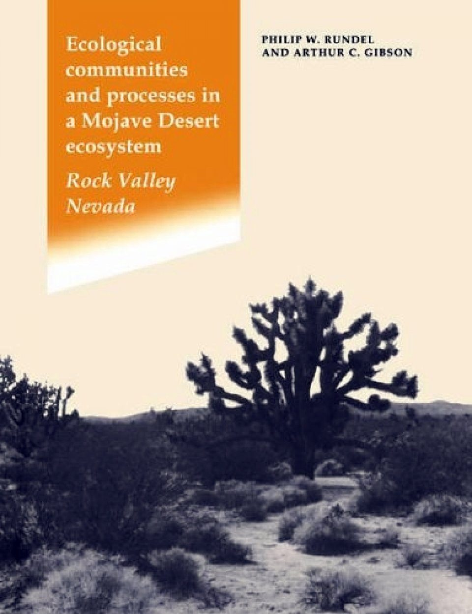 Ecological Communities and Processes in a Mojave Desert Ecosystem