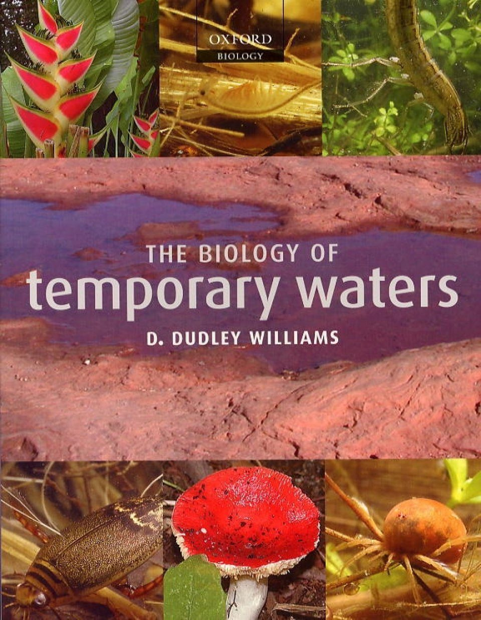 The Biology of Temporary Waters