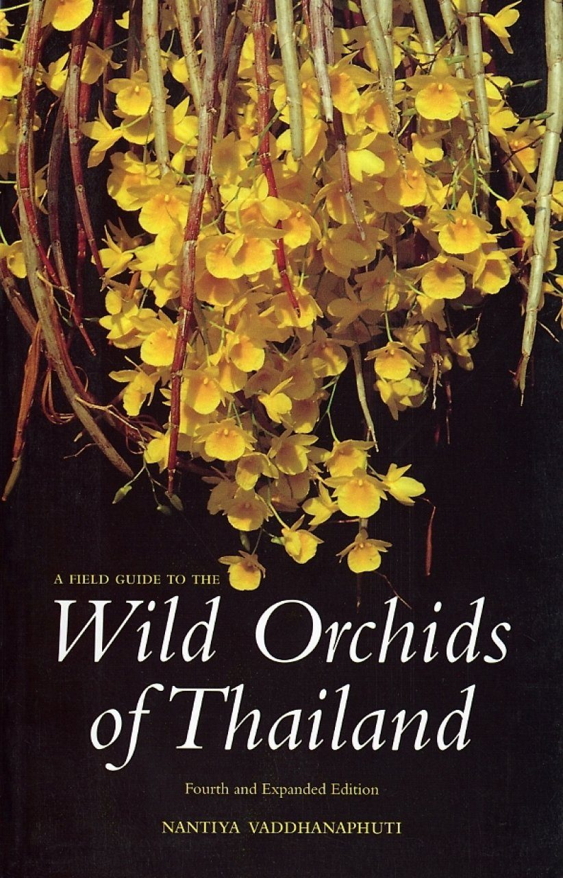 A Field Guide to the Wild Orchids of Thailand