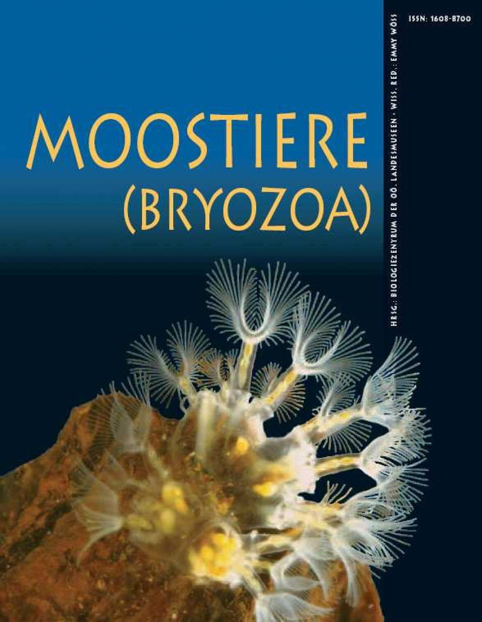 Moostiere (Bryozoa) / Moss Animals (Bryozoa) [English / French / German]