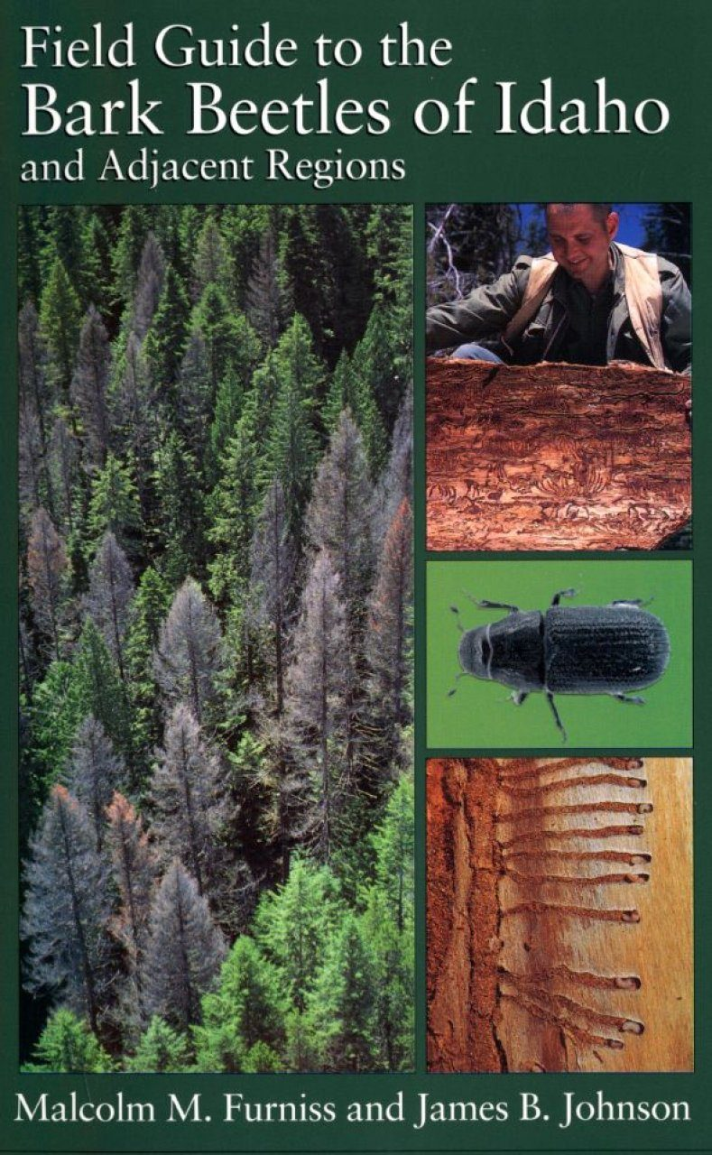 Field Guide to the Bark Beetles of Idaho and Adjacent Regions