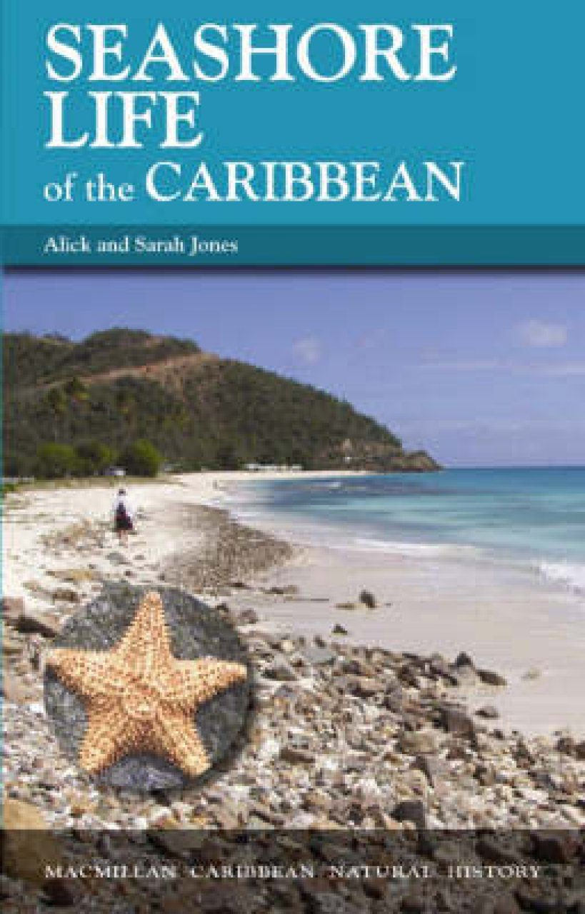 Seashore Life of the Caribbean