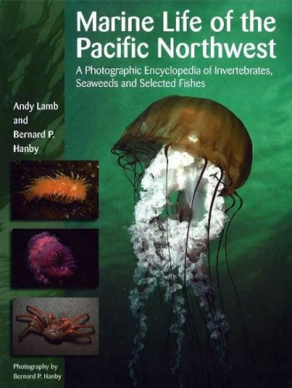 Marine Life of the Pacific Northwest