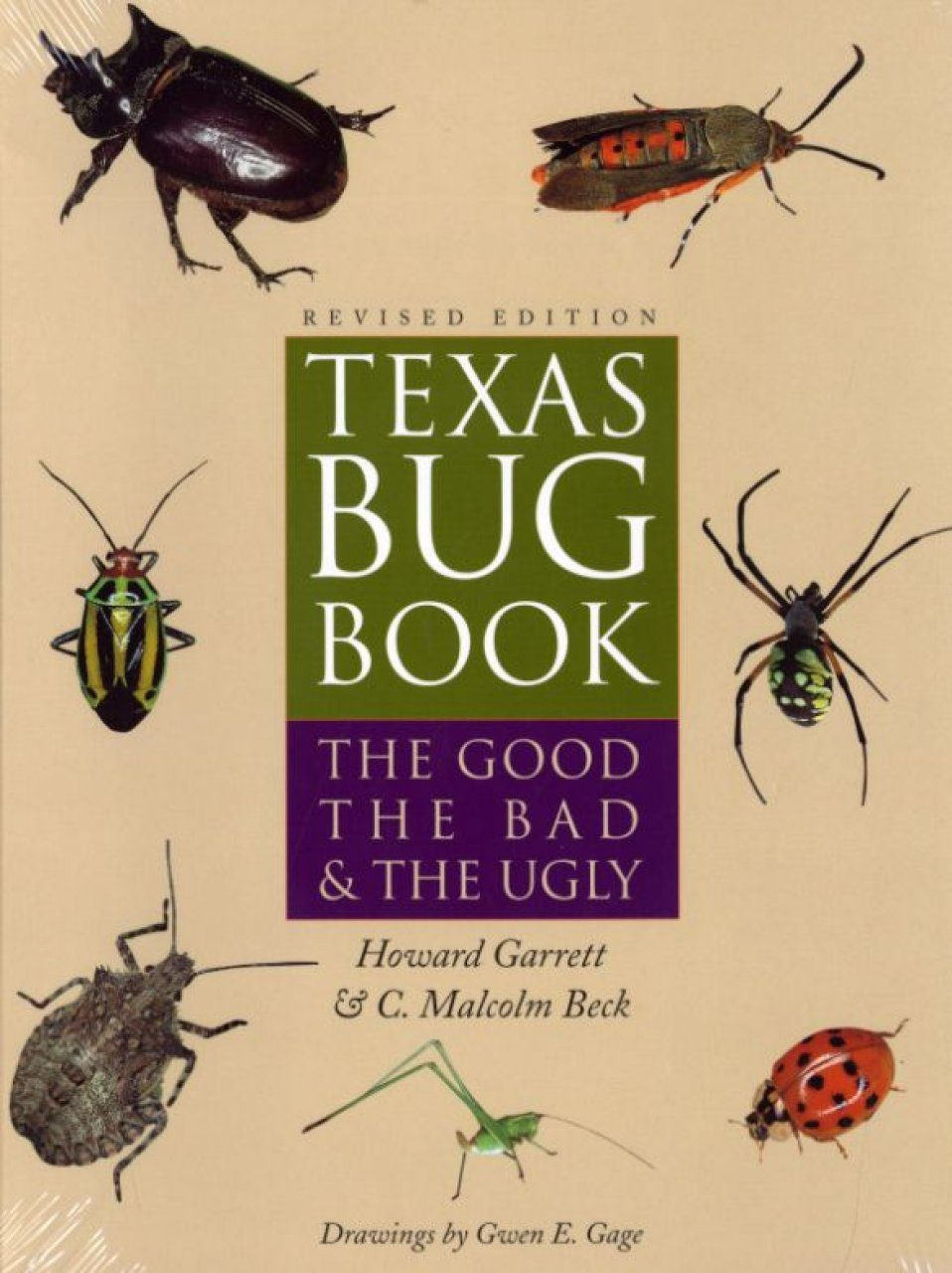 Texas Bug Book