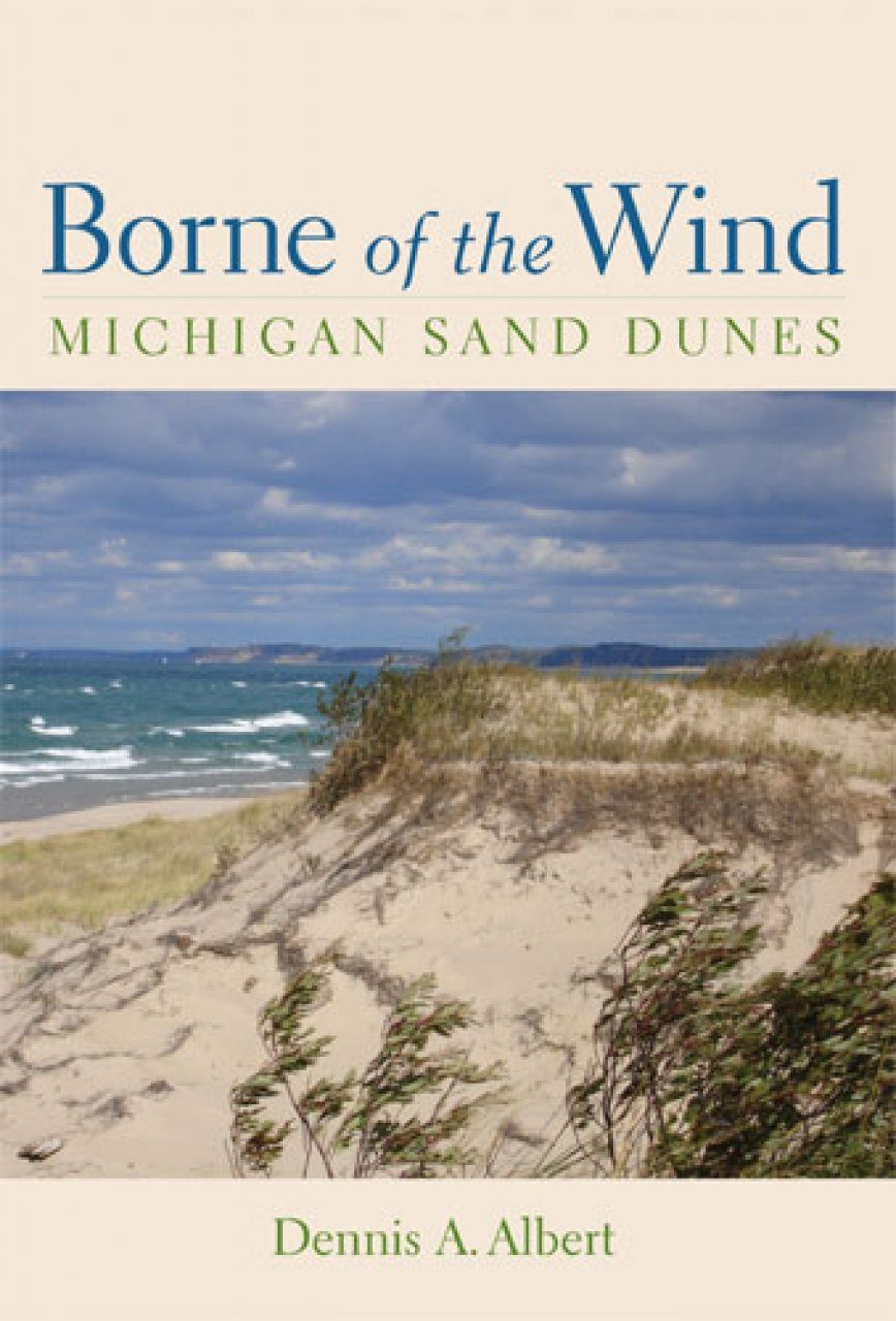 Borne of The Wind
