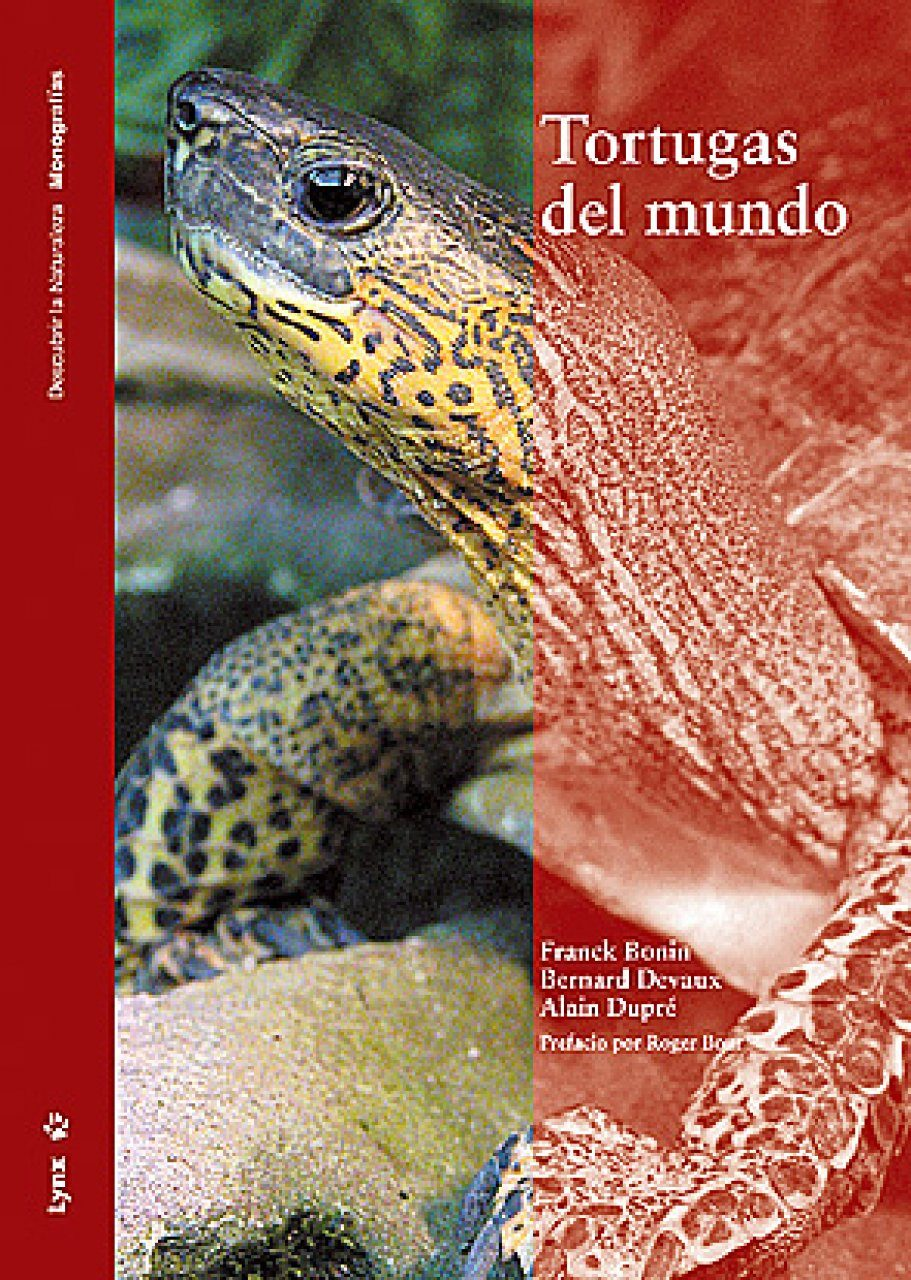 Tortugas del Mundo [Turtles of the World]