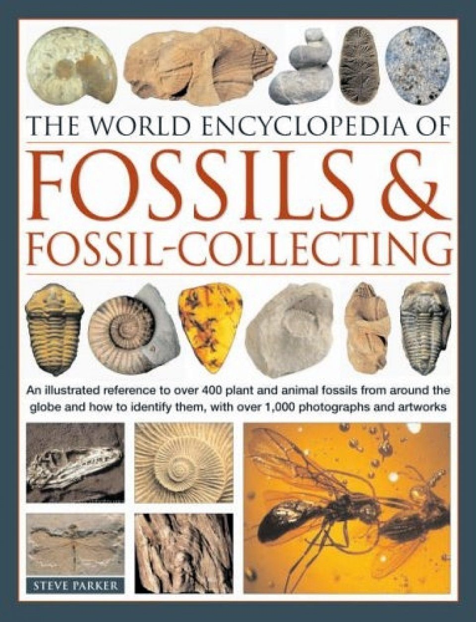 The World Encyclopedia Of Fossils Fossil Collecting