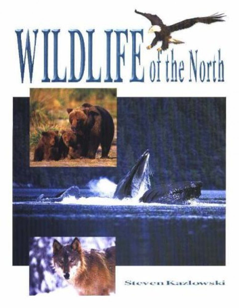 Wildlife of the North