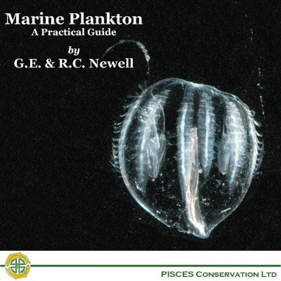 Marine Plankton - A Practical Guide