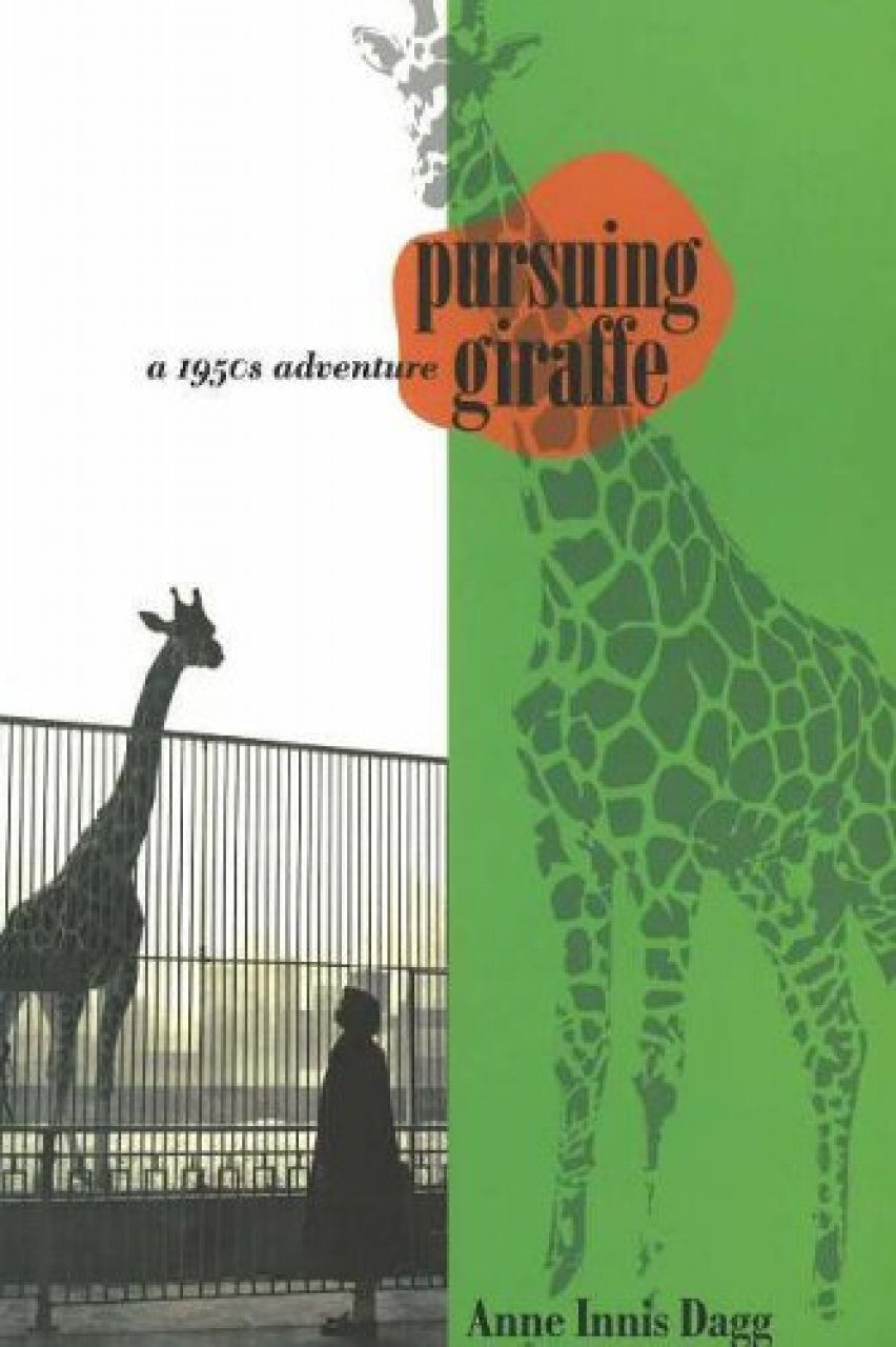 Pursuing Giraffe