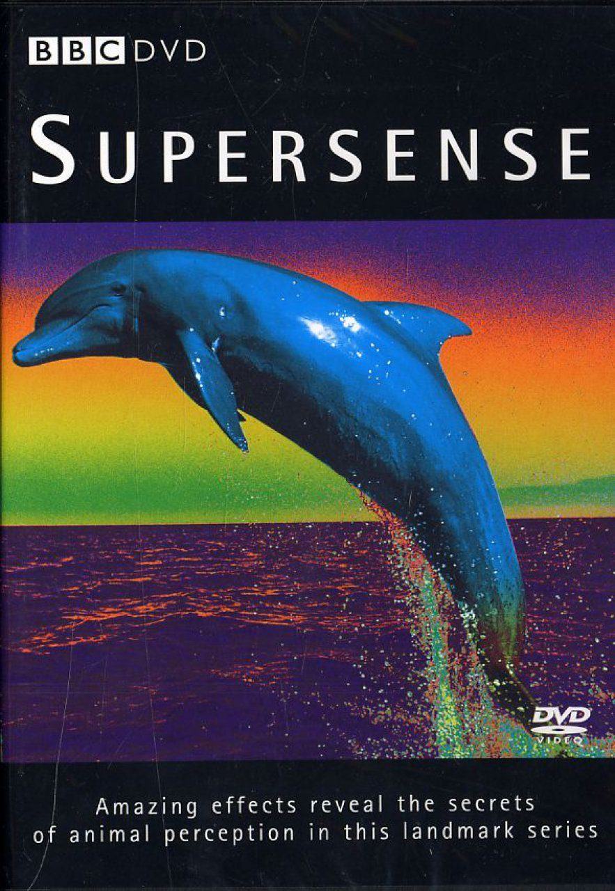 Supersense - DVD (Region 2 & 4)