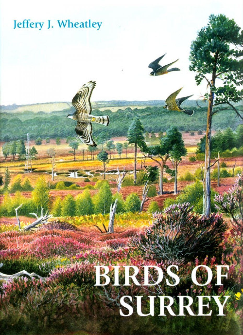 Birds of Surrey