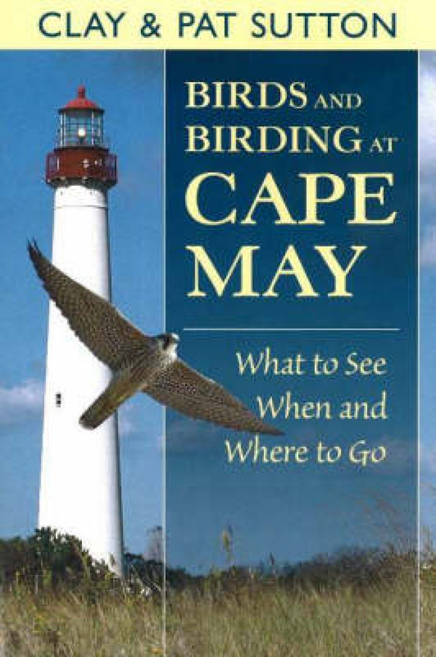 Birds and Birding at Cape May