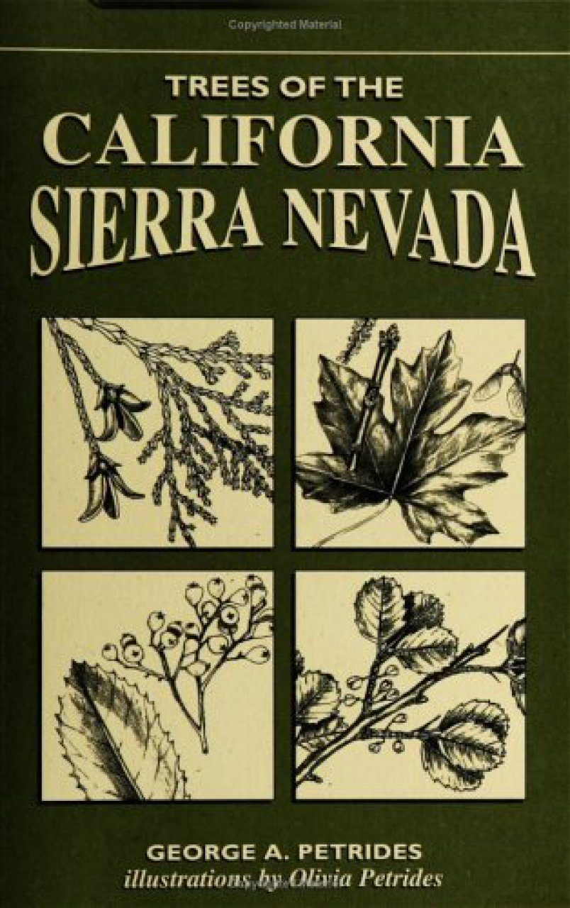 Trees of the California Sierra Nevada