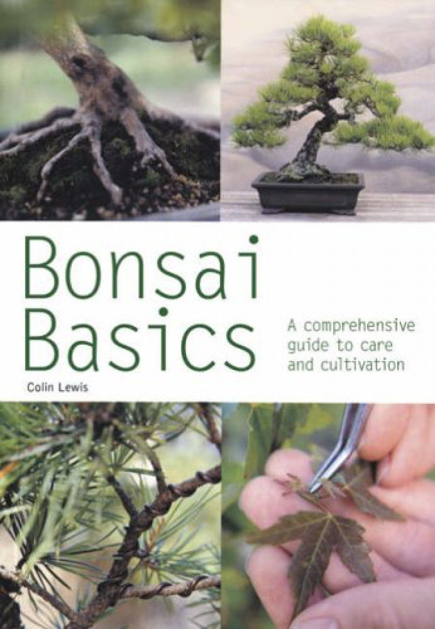 Bonsai Basics