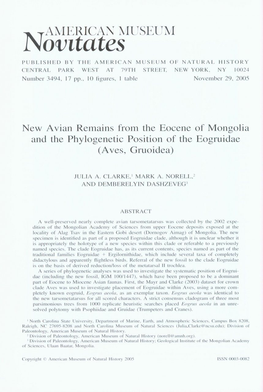 New Avian Remains from the Eocene of Mongolia and the Phylogenetic Position of the Eogruidae (Aves, Gruoidea)
