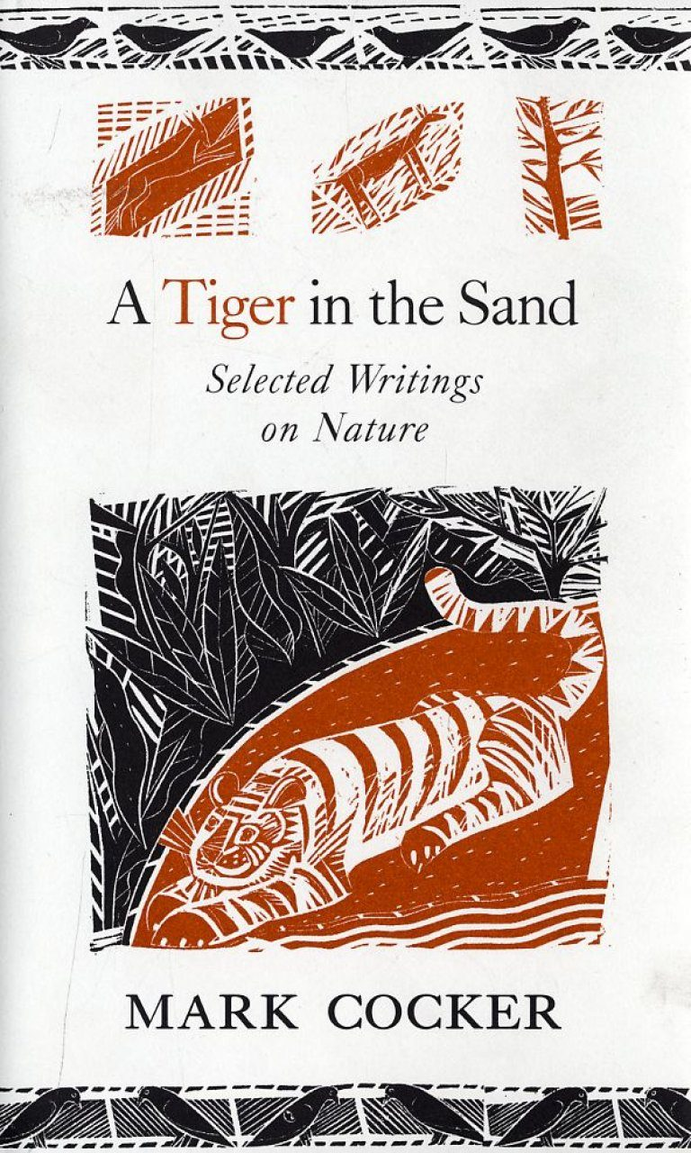 A Tiger in the Sand