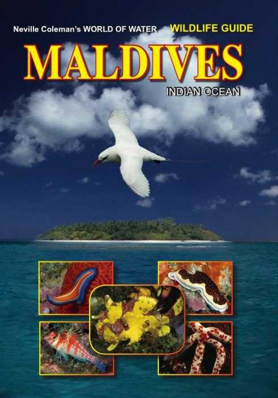 World of Water Wildlife Guide: Maldives, Indian Ocean