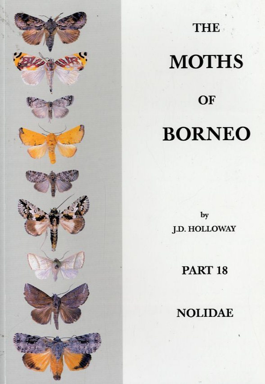 The Moths of Borneo, Part 18