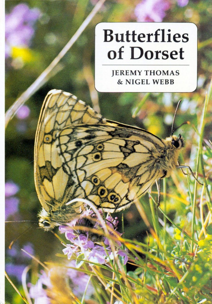 Butterflies of Dorset