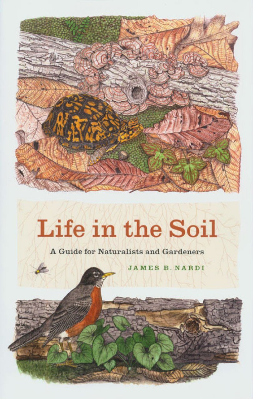 Life in the Soil