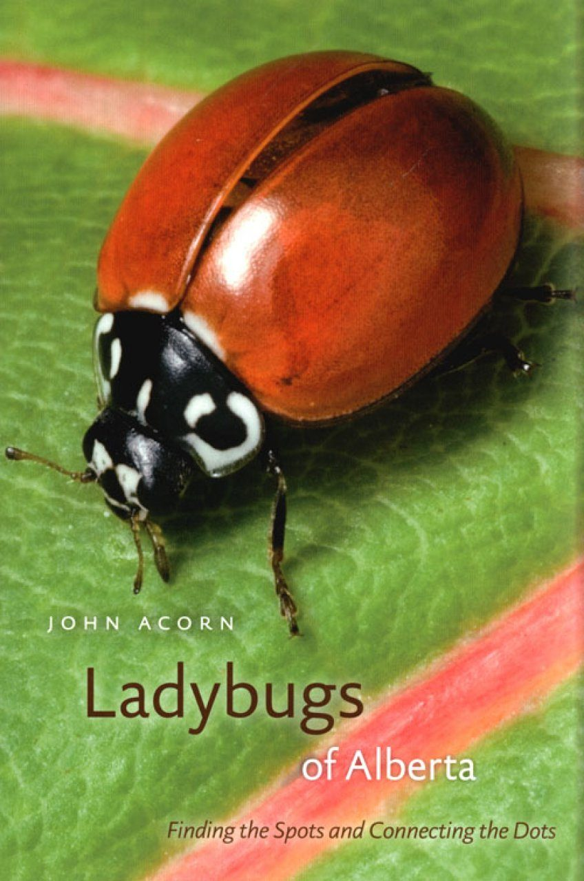 Ladybugs of Alberta